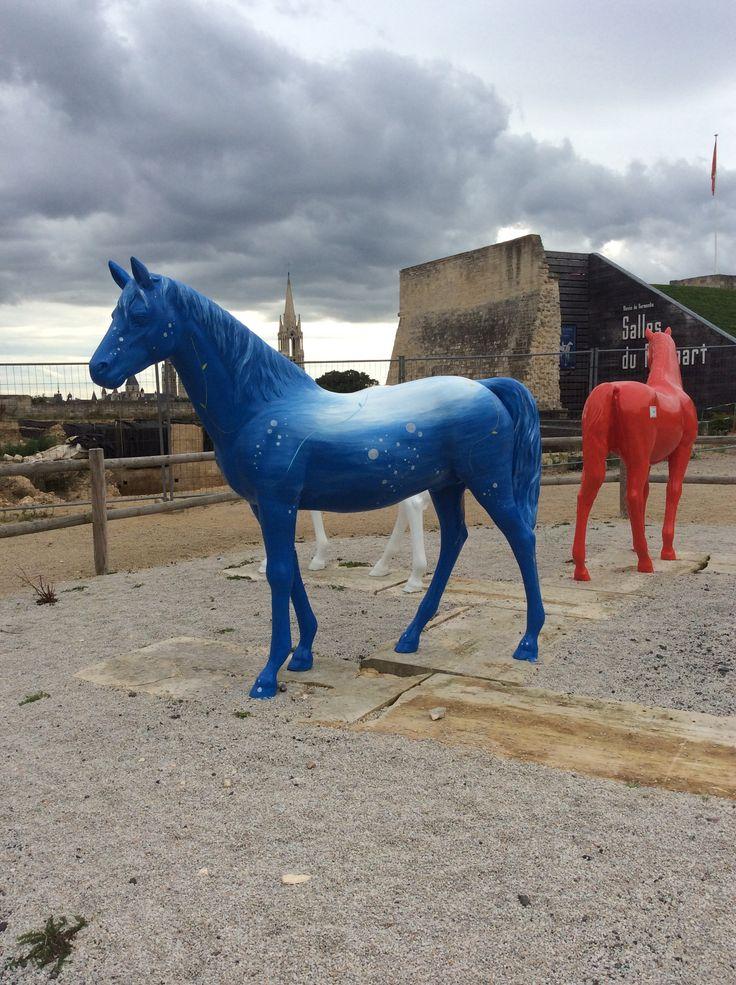 Horses at weg