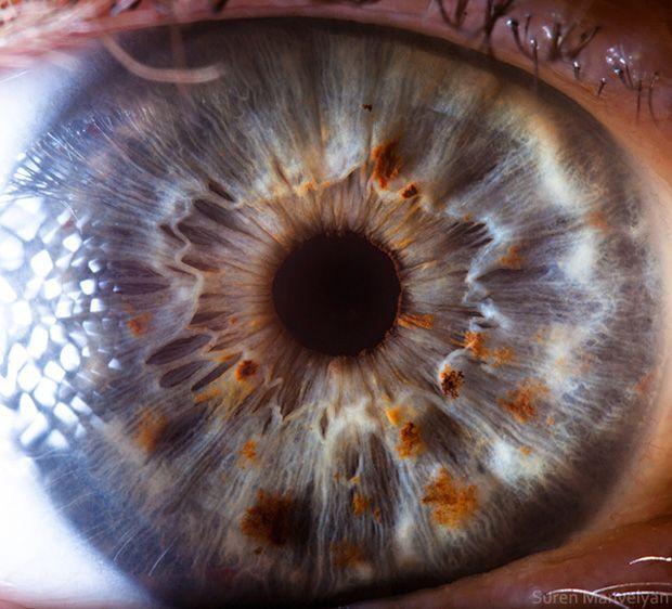 Sedici fotografie di occhi visti molto da vicino. Fisico teorico e fotografo professionista, Suren Manvelyan ci mostra come sono gli occhi, davvero. http://www.linkiesta.it/occhi-del-cuore