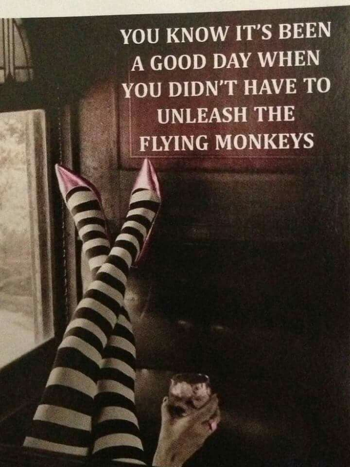 Not my monkeys not my circus | My life as a flail ...