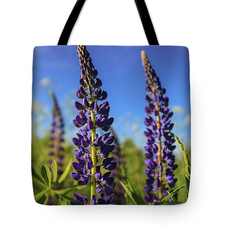 #AnnaMatveeva #Photographers #FineArtAmerica #FineArtPrints #ForSale #Artdecor #Decor #Homedecor #Purple #Flowers #Nature #ToteBags   http://anna-matveeva.pixels.com
