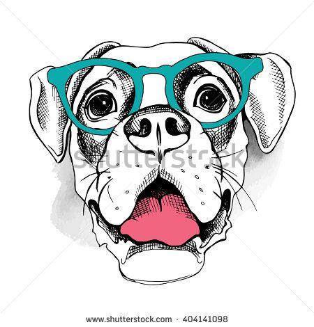 Боксер портрет собака в очках.  Векторная иллюстрация.  - Векторная иллюстрация