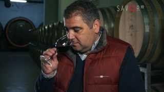 2013.10 - Razvan Macici prezinta primele trei vinuri rosii lansate de Crama Atelier. #cramaatelier #M1eveniment #M1video