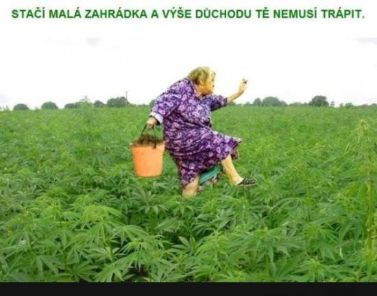Důchod...   torpeda.cz - vtipné obrázky, vtipy a videa