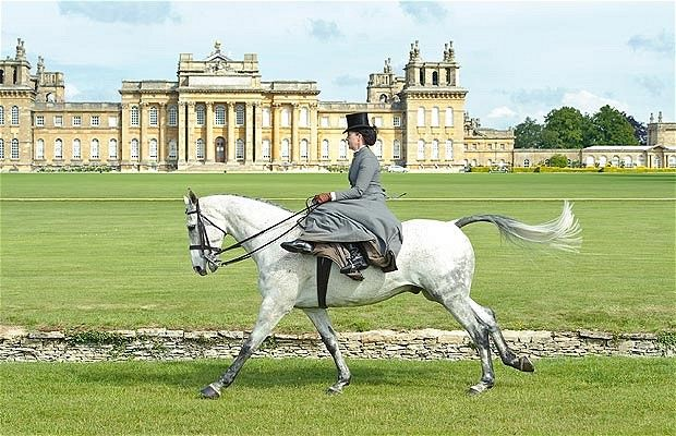 Rebecca Holland on Henry, who demonstrated team side saddle riding with The Fying Foxes at the CLA Game Fair, Bleinheim Palace, Oxfordshire