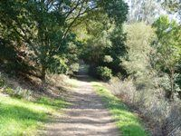 Tilden Regional Park: This review covers a hilly two mile loop hike from the entrance located at the intersection of Grizzly Peak Blvd, Centennial Drive and Golf Course drive across the street from UC Berkeley Botanical Garden and Lawrence Hall of Science. Watch for the small brown Tilden Regional Park sign at the intersection and head down Golf Course Drive.
