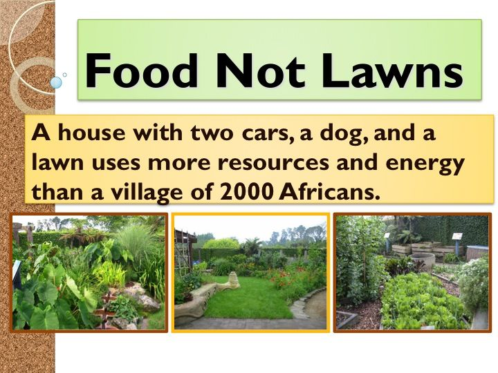 888 Best Garden Delights Permaculture Images On Pinterest