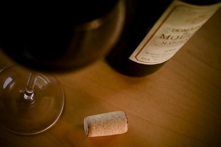 Wine Quote  - Artists and poets still find life's meaning in a glass of wine. - Joy Sterling
