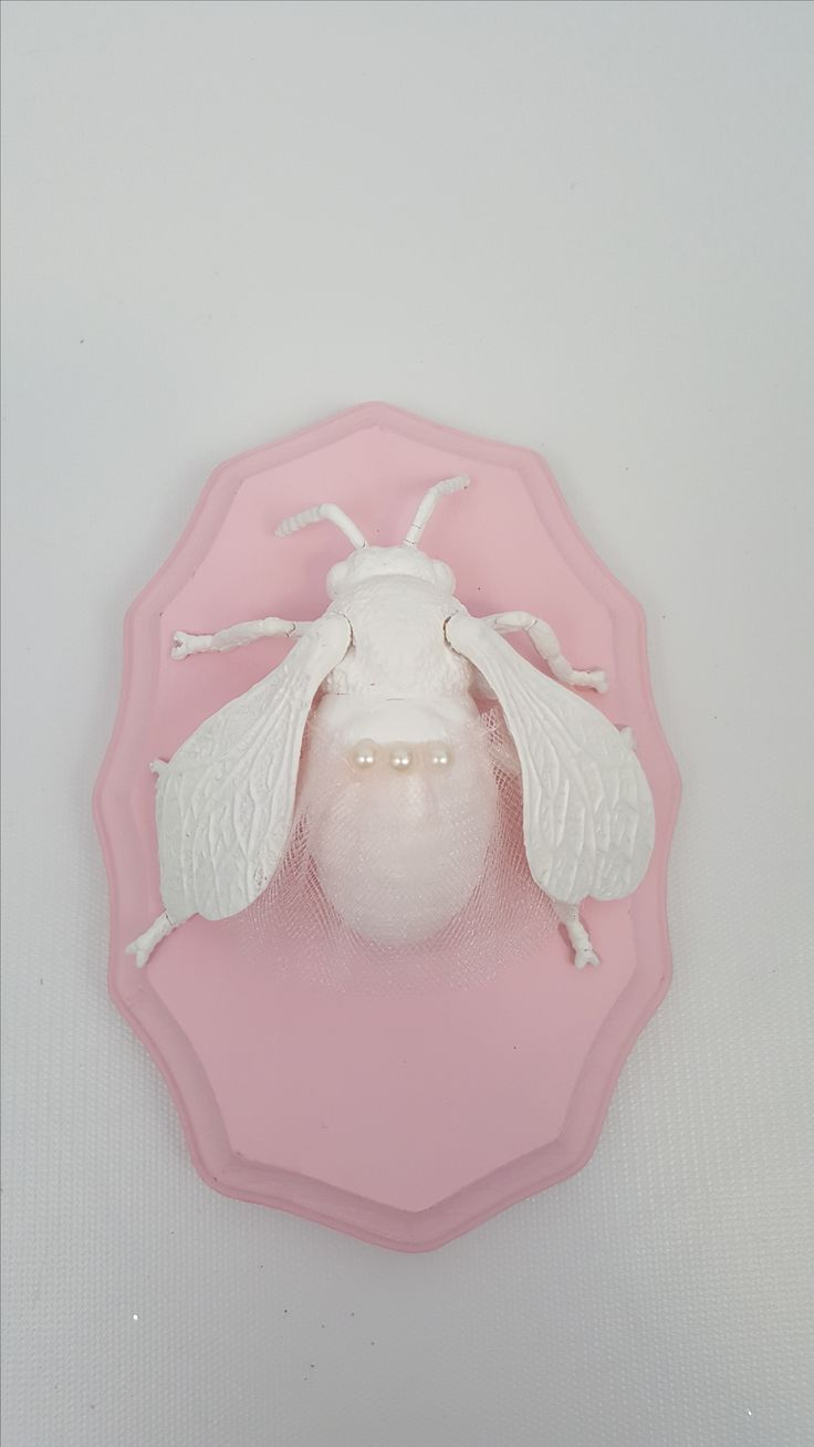 Tutu Taxidermy!  The perfect funny gift, dance studio decor, or even nursery decor.  It's awesome!