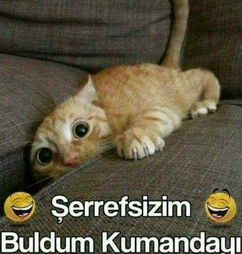 Mizah http://turkrazzi.com/ppost/401805597990342603/