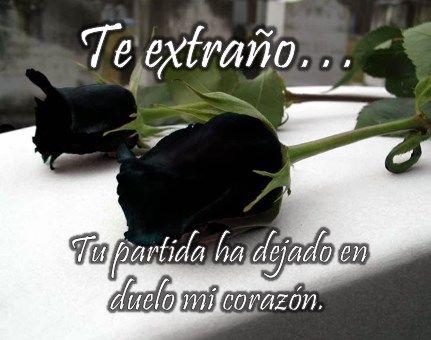 Rosas negras para expresar duelo