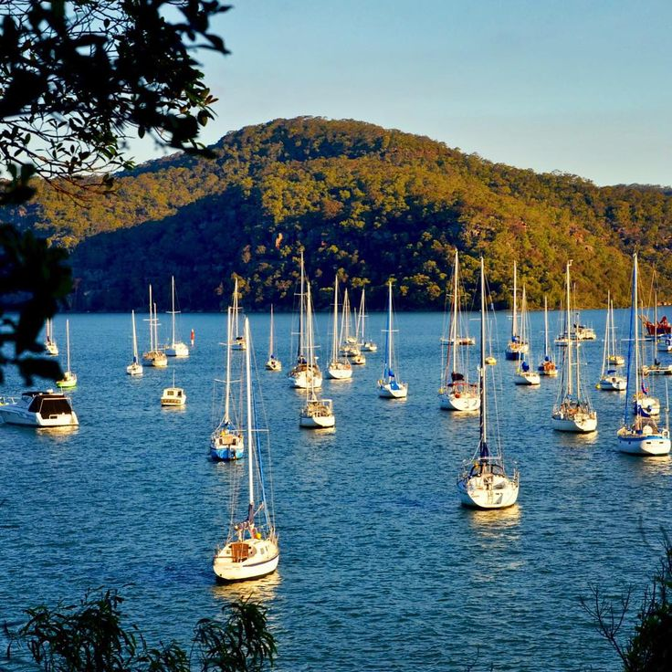 Hire a houseboat on the Hawkesbury River and soak up the serenity with friends and family. #ilovesydney iIG/jingru…:… Australia Travel