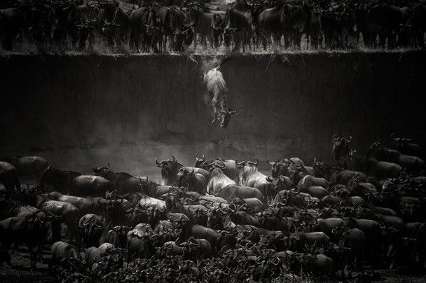 Tanzania - National Geographic Photo Contest