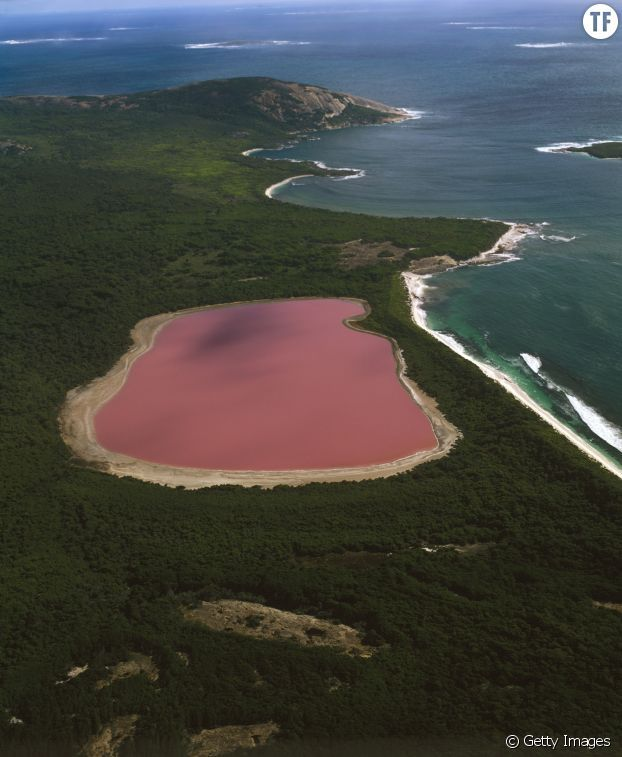 Le Lac Hillier en Australie-Occidentale