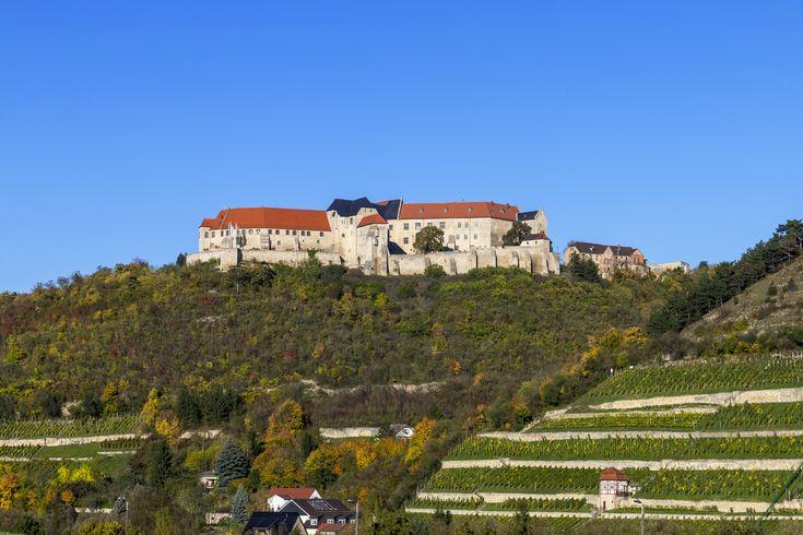 Das Weinbaugebiet Saale-Unstrut – Romantik und Geschichte