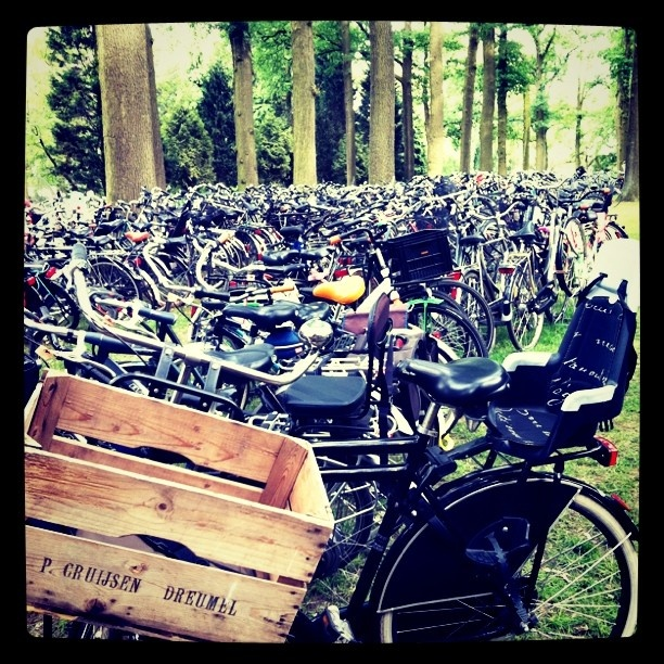 Parking at the Eindhoven Culinair(Holland)