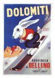 Beluno Dolomiti