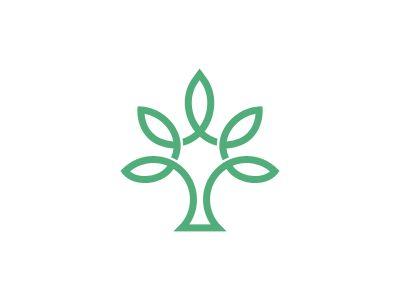 Mangrove Logo Proposal by Sean Farrell