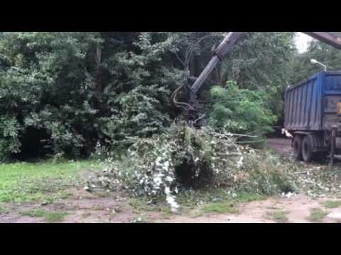 Вывоз спиленных деревьев КАМАЗ Ломовоз