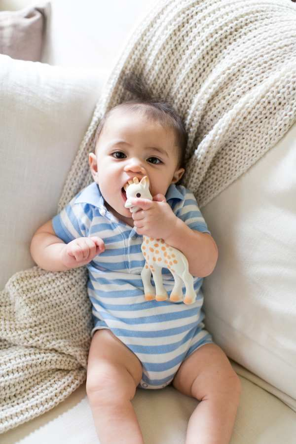 Sophie la girafe Teething Toy  Sophie la girafe items from…