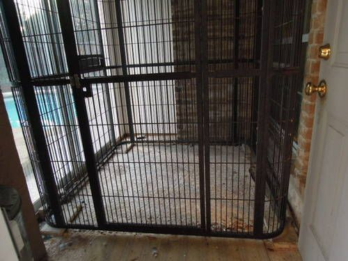 au0026e large walkin aviary parrot cage for dog