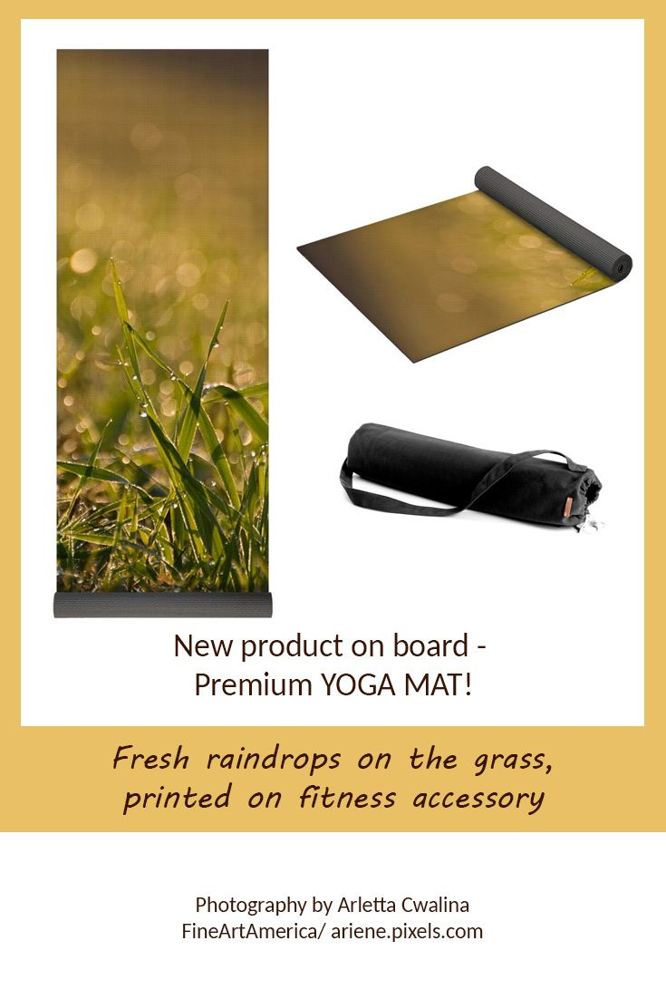 I didn't expect to see such a great new product - YOGA MAT - from FineArtAmerica, it looks just perfect with the nature photography printed on it! Look at the fresh raindrops on the grass macro. Photography by Arletta Cwalina/ ariene.pixels.com. See more clothes and home decor ideas and if you love it, feel free to share, maybe your friends would like to have it too :) #fitness #yoga #mat #raindrops