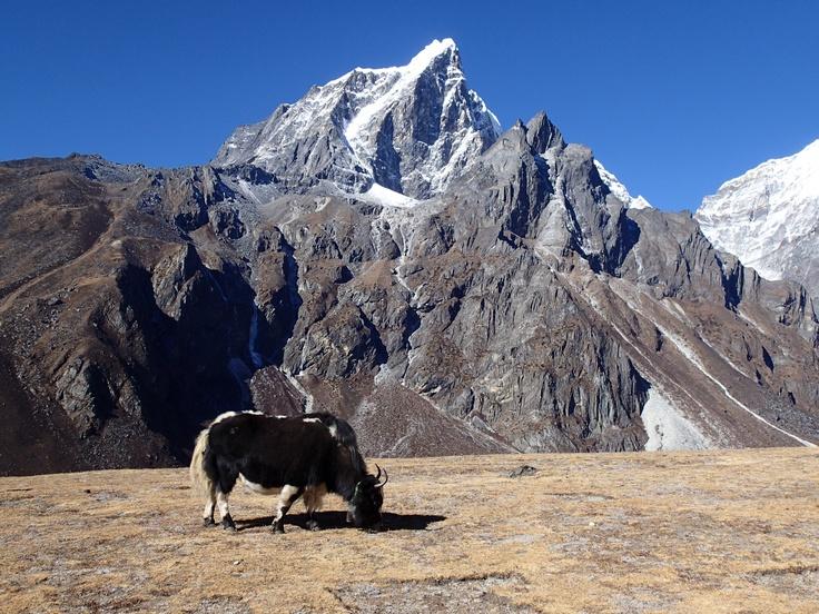 Taoche peak
