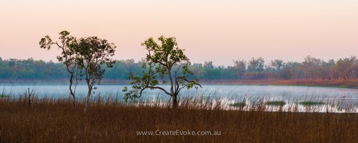 Mist and fog are a great asset of the dry season mornings in my opinion! Woodfords lagoon just off Old Bynoe Rd. #NTaustralia #darwinNT