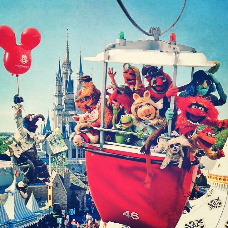 17 Best Images About Kermit Miss Piggy On Pinterest: 17 Best Images About Things Miss Piggy On Pinterest