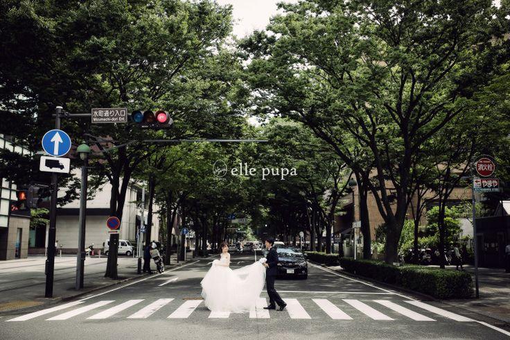 飛び出せ関西 at 横浜前撮り  *ウェディングフォト elle pupa blog* Ameba (アメーバ)