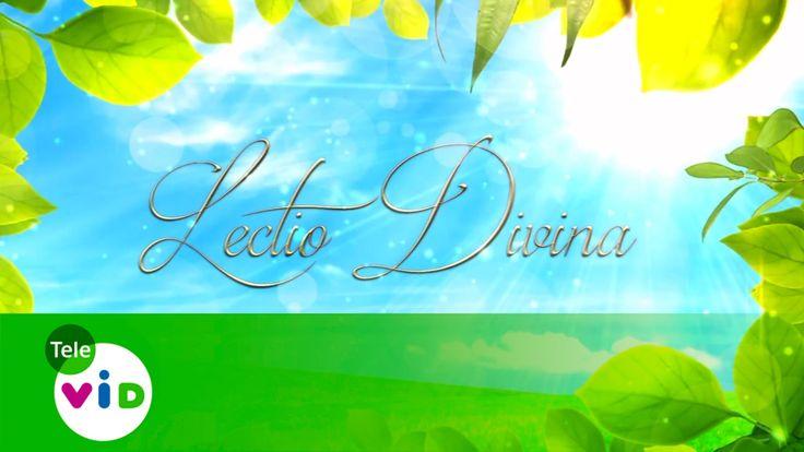 Evangelio Del Día | Lectio Divina (11 De Julio De 2016) - Tele VID