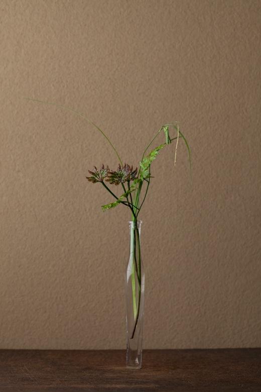 2012年6月23日(土) 草ものこそが侘びではないかと、このごろ思います。 花=黄蓮(オウレン)、鳴子菅(ナルコスゲ) 器=古ガラス細瓶(20世紀)