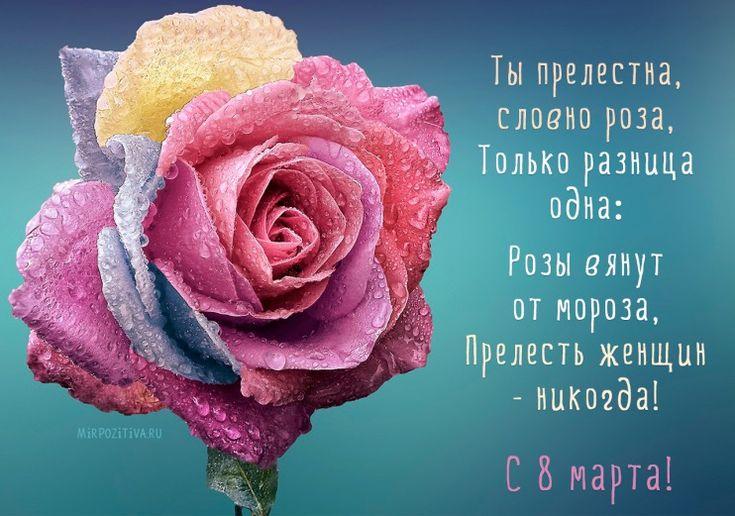 Ты прелестна, словно роза, Только разница одна: Розы вянут от мороза, Прелесть женщин - никогда!