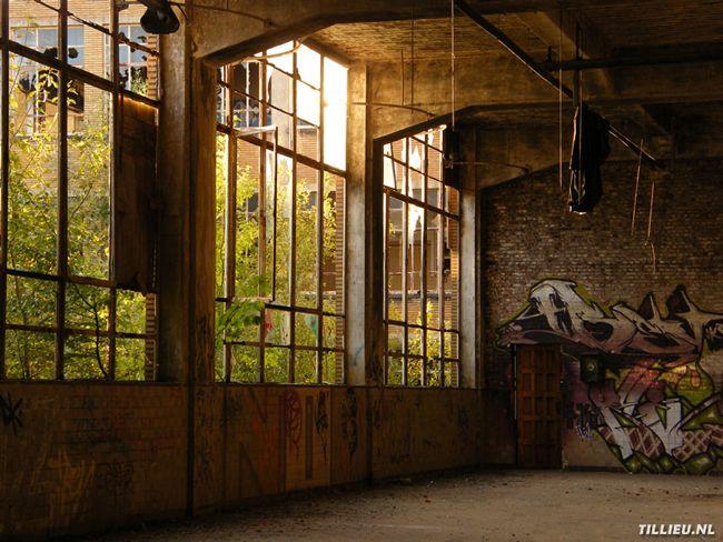 fabriek, hal, ramen, lichtinval, graffiti, vervallen, leerlooierij, architectuur