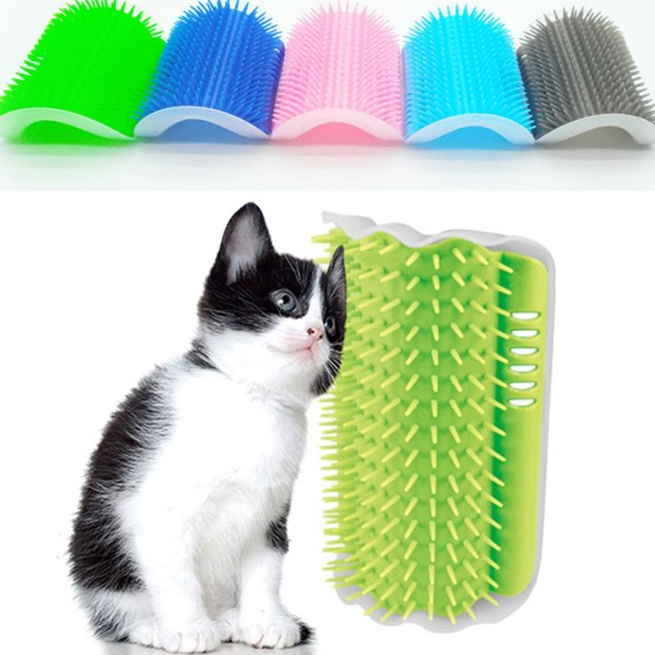 Cat Corner Brush For Long Hair Squeaky Face Massage Comb