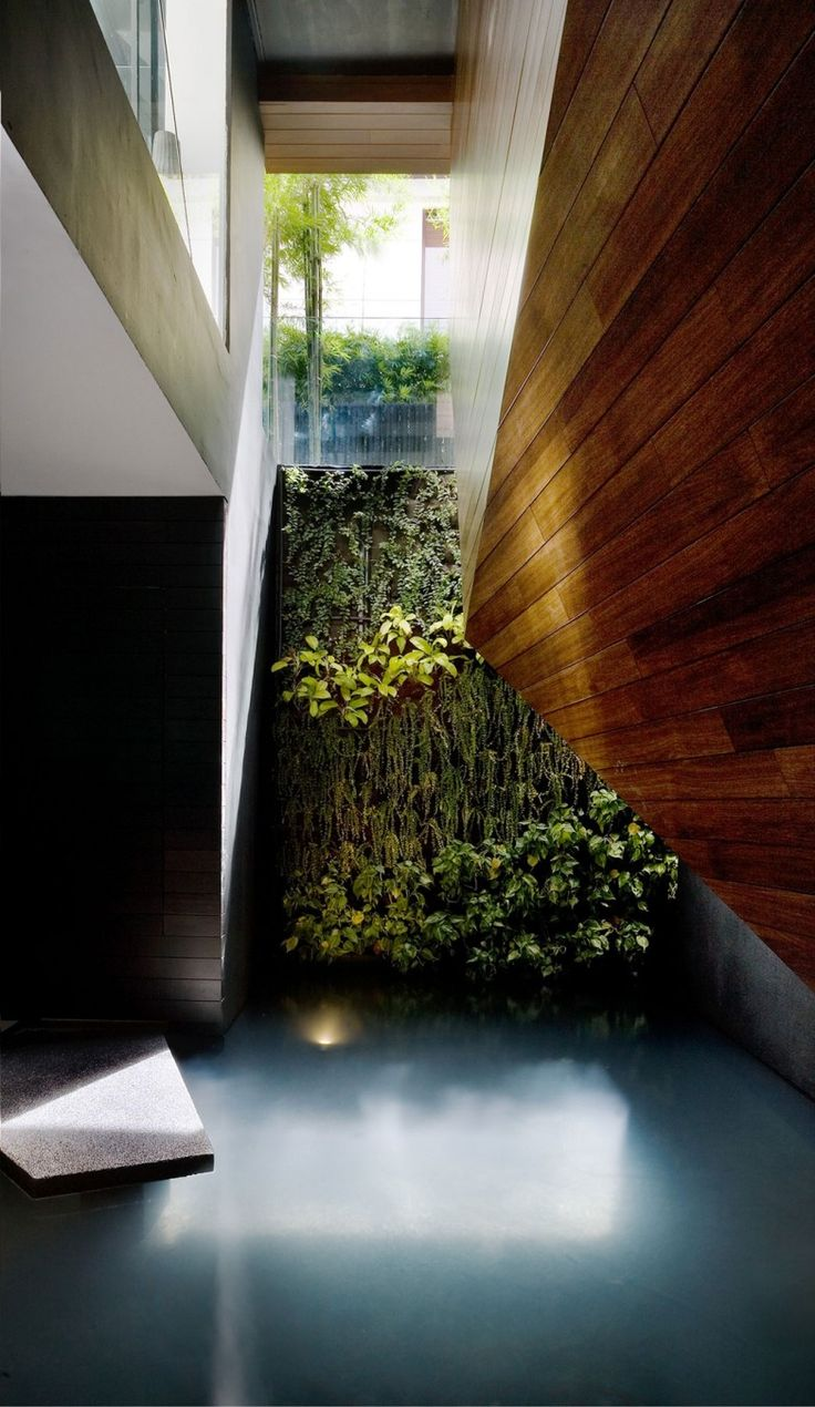 Origami House by Formwerkz Architects. Indoor green wall and pool.