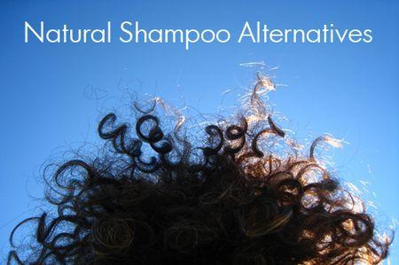 Natural Shampoo Alteratives | The Natural Beauty Workshop (No-Poo, Shampoo Bars, Lo-Poo, and more)