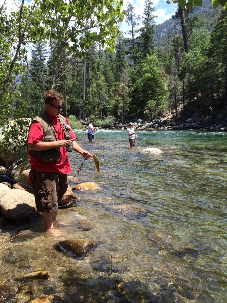 34 best images about sequoia and kings canyon national for Kings river fishing