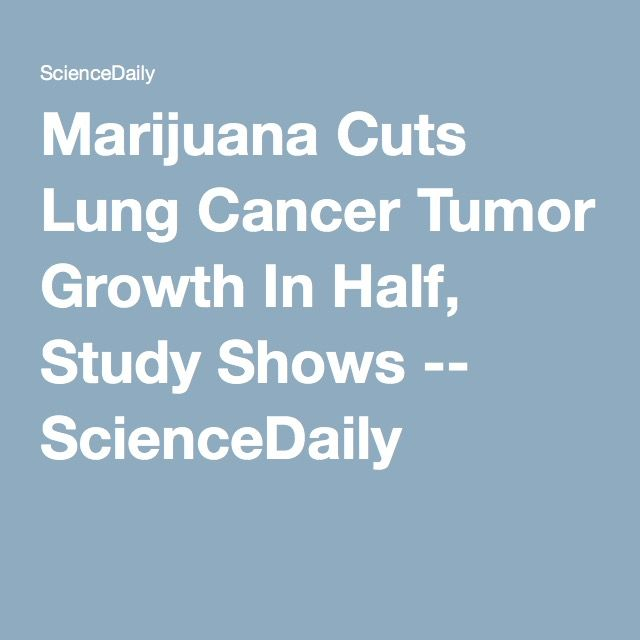 Marijuana Cuts Lung Cancer Tumor Growth In Half, Study Shows -- ScienceDaily