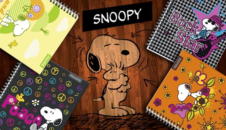 Licencia Snoopy 2013