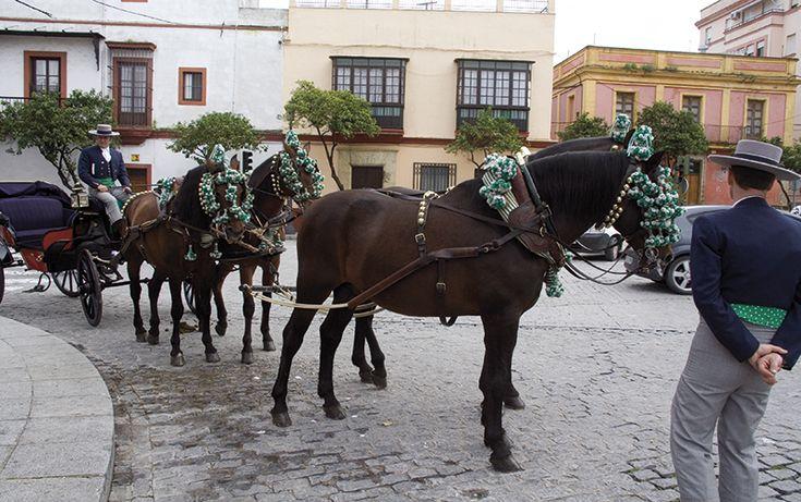 Hestevognene fra Den Kongelige Andalusiske Rideskole er en vigtig del af bybilledet i Jerez