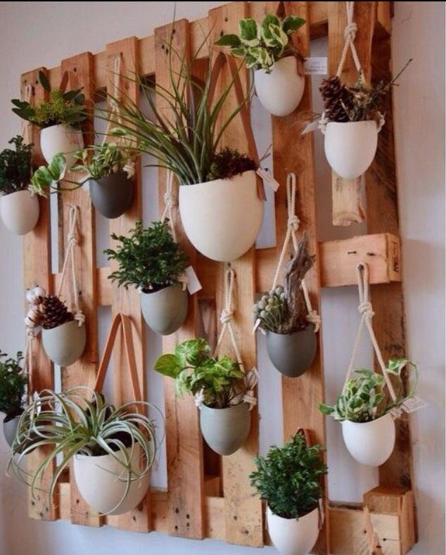 DIY herb wall
