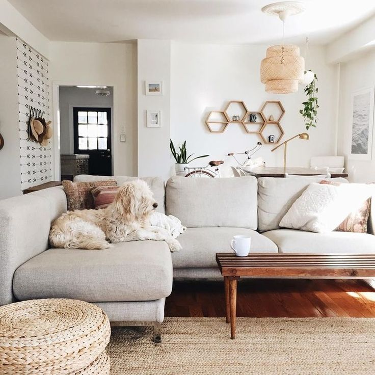 cozy yet bright and airy living room with a light gray couch.. featuring  adorable