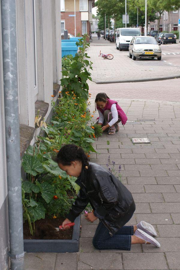 Children gardening in the street! :)
