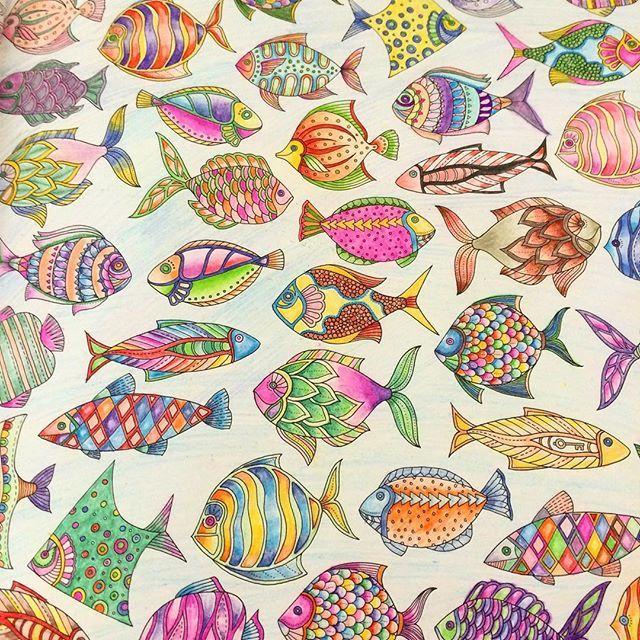 Adult Coloring Pages Books Fish Zentangle Colored Pencils Prismacolor Johanna Basford Color Combos Tropical