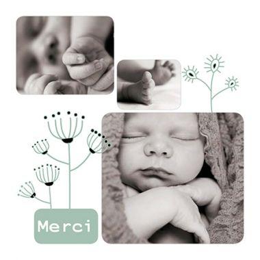 Carte de remerciements végétalehttp://www.lips.fr/impression/carte-remerciement-naissance/format-130-x-130-2p-modele.html?modele_id=332 à personnaliser avec vos photos :
