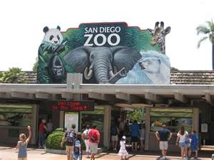 The world-famous San Diego Zoo