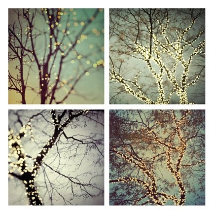 Fairy light trees ... awesome :)