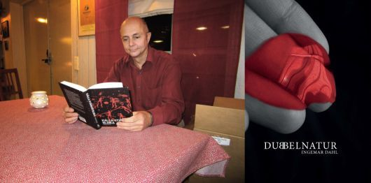 Författarbesök med boksläpp lördag 21/11 på Arkenbiblioteket. Läs mer på bibliotekswebben, länk i bilden.