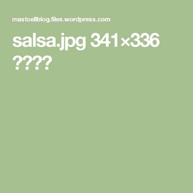 salsa.jpg 341×336 ピクセル