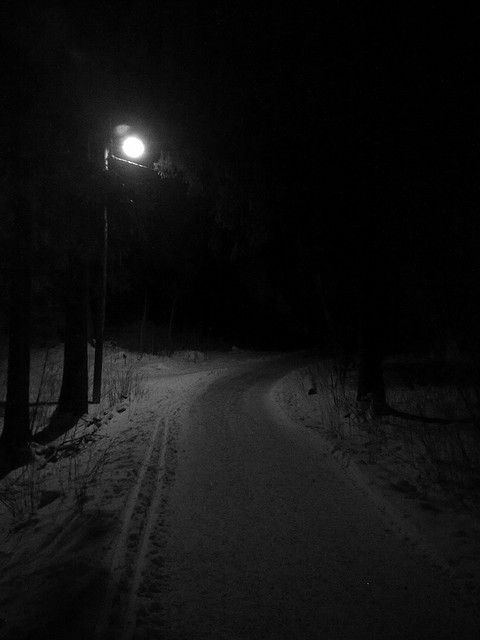 darkness offers a safety of its own.If you walk a forest path regularly enough to learn its twists and turns it can feel enveloping and protective to move under the cover of darkness with all the other creatures.